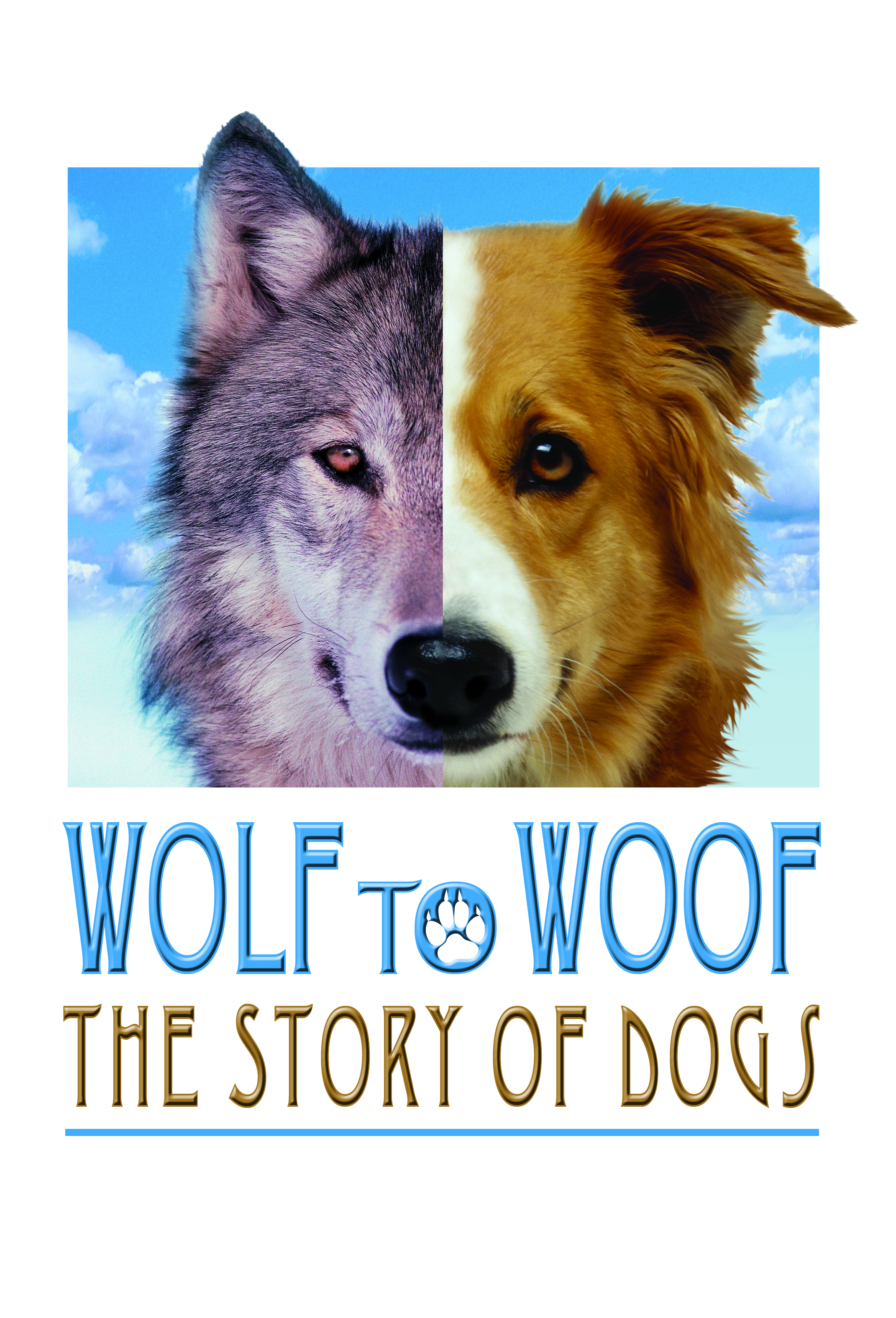 Wolf To Woof The Story Of Dogs Wonder Works Exhibits Cihuahua Learn More About Pricing And Tour Schedules Please Contact Our Sales Staff At 325 692 8811 Or Email Jack